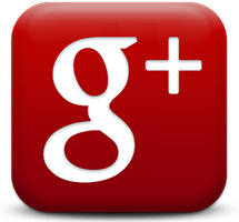 Google + Florida Movers
